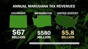 3 Ps One: Pot; marijuana Marijuana-Growing-Field-226x300