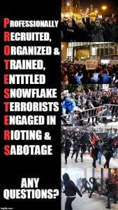 snowflake culture terrorists